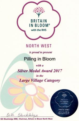 Pilling in Bloom
